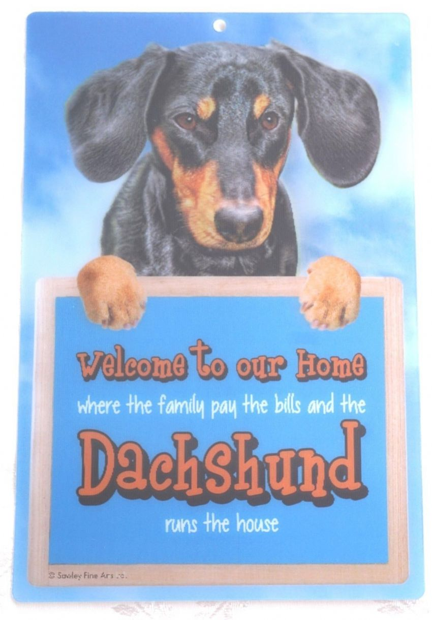 DACHSHUND BLACK AND TAN 3D WELCOME SIGN STUNNING EYE CATCHING 23CM X 15CM SIGN